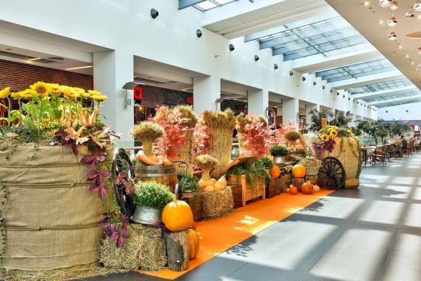 """Само до 31 октомври в Grand Mall – над 120 награди от """"Игрите на есента"""", безплатна бира и гурме кухня"""